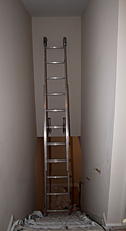 Stairway showing extension ladder